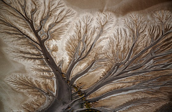art-made-by-nature-dried-up-river-delta-960x630